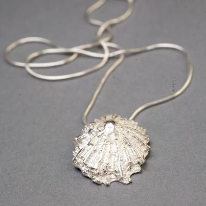 joannes barnacle